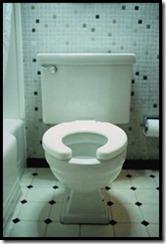 Raised height toilet
