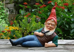 Neil Adams Gnome