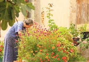 Neil Adams senior garden